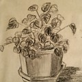 Charcoal Planter by Jan Marie