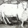 Charcoal Sheep by Kathleen Barnes