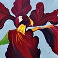 Charisma by Sonali Kukreja
