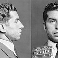 Charles Lucky Luciano by Granger
