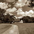 Charles Pinckney's Snee Farm Country Retreat by Dale Powell