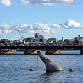 Charles River Boston Ma Crossing The Charles Citgo Sign Mass Ave Bridge by Toby McGuire
