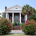 Charleston At His Best by Susanne Van Hulst