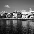 Charleston Battery Row Black And White by Dustin K Ryan