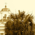 Charleston City Life by Staci-Jill Burnley