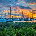 Charleston Marina by Yvette Wilson
