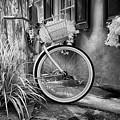 Charleston Street Bike by Cindy Archbell