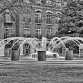 Charleston Waterfront Park Fountain Black And White by Carol Groenen
