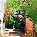Charlestons Alley by Donna Bentley