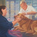 Charlie And The Vet by Diane Caudle