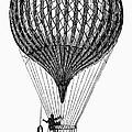 Charli�re Balloon by Granger