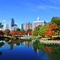 Charlotte In The Fall by Jill Lang