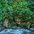 Charming Creek Walkway 2 by Robert Green