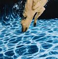 Chase 2 by Jill Reger