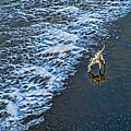 Chasing Waves by Casper Cammeraat