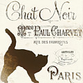 Chat Noir Paris by Mindy Sommers