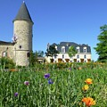 Chateau Guiraud In Spring by Barbie Corbett-Newmin