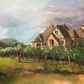 Chateau Meichtry - Dreams Come True - Vineyard by Jan Dappen