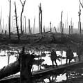 Chateau Wood France World War One  1917 by Daniel Hagerman