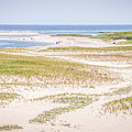 Chatham Lighthouse Beach by Robert Anastasi