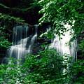 Chattahoochee Waterfall by Vicky Brago-Mitchell