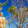 Che Guevara Statue In La Higuera by Jess Kraft