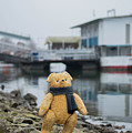 Cheerful Teddy Bear In Knitted Scarf Stand By The Riverside Beside The Port by Andrea Varga