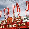 Cheese Dogs Galore by The Art of Alice Terrill