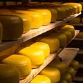 Cheese Factory by Marcin Rogozinski