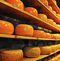 Cheese In Holland by Harry Spitz