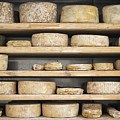 Cheese Wheels On Wooden Shelves In The Cheese Store by Benyamin Shoham