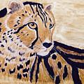 Cheeta by Donald Paczynski