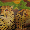 Cheetah 2 by Heather Bolliger