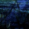 Cheetah Blue by Carole Guillen