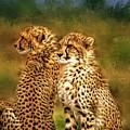 Cheetah Siblings by Tina LeCour