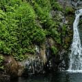 Chemisal Falls At Vichy Springs In Ukiah In Mendocino County, California by David Oppenheimer