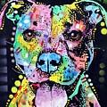 Cherish The Pitbull by Dean Russo