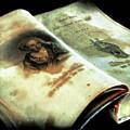 Cherished Old Book by Pennie  McCracken