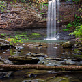 Cherokee Falls - Cloudland State Park Georgia by Brian Harig