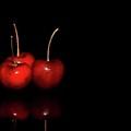 Cherry 3 by J Michael Hamon