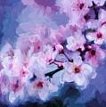 Cherry Blossom 3 by Charmaine Zoe