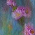 Cherry Blossom by Jim Hatch