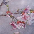Japanese Cherry Blossom Tree by Graciela Castro