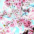 Cherry Blossom Watercolor by Waterflower Designs