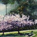 Cherry Blossoms by Rick Nederlof