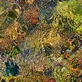 Cherry Creek Water Abstract by Britt Runyon