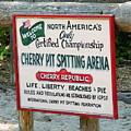 Cherry Pit Spitting by Adlai Neubauer