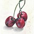Cherry by Yana Sadykova