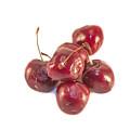 Cherrys Prunus Avium by D R