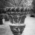 Cherub Planter B W by Teresa Mucha